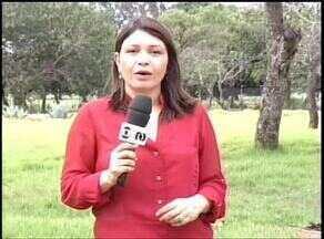 Veja os destaques do Jornal do Campo deste domingo (23) - Veja os destaques do Jornal do Campo deste domingo (23)