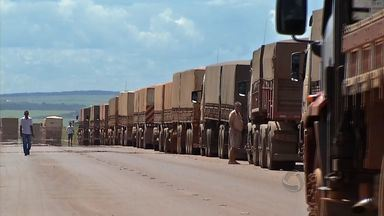 Carretas se acumulam em acostamento de rodovia no sul de MT - Diversas carretas estão se acumulando no acostamento da BR-163 para poder descarregar no terminal da ALL.