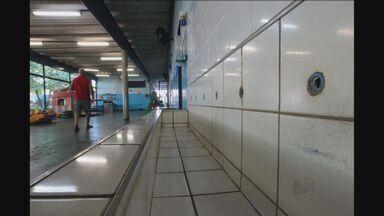 Creche é invadida por vândalos em Ribeirão Preto, SP - Três pessoas teriam entrada na escola.