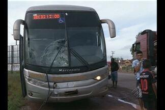 Motociclista morre em acidente na BR-010 - A moto onde ele estava foi atingida por um ônibus.