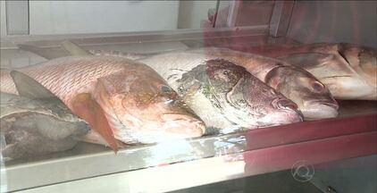 Vendedores recomendam comprar o peixe da Semana Santa com antecedência - Preço dos peixes deve aumentar com o tempo.