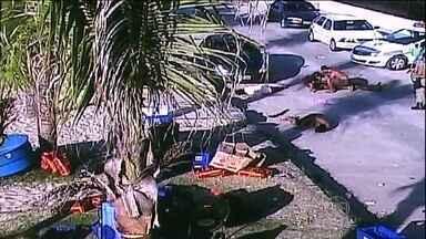 Briga termina com uma mulher morta em Canavieiras (SC) - A confusão começou durante uma festa em um barco. Cem pessoas participavam da festa em alto mar. Uma mulher pegou a arma de borracha de um policial. Ela atirou várias vezes e acertou a viatura. O PM respondeu com tiros.
