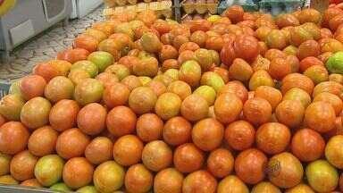 Clima seco e frio faz preço do tomate aumentar na região de São Carlos - Clima seco e frio faz preço do tomate aumentar na região de São Carlos