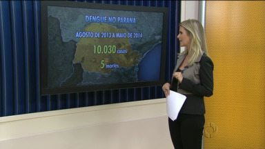 Paraná já teve 10.030 casos de dengue em 2014 - Cinco mortes foram registradas por causa da doença.
