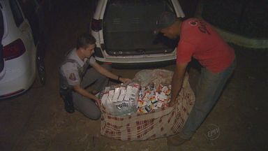 Polícia investiga procedência de medicamentos deixados em canavial em Dumont, SP - Remédios e vacinas serão descartados.