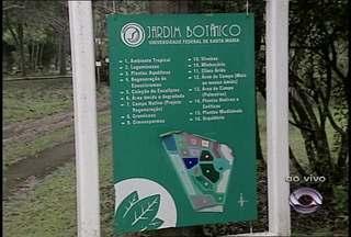 Atividades marcam o Dia Mundial do Meio Ambiente em Santa Maria (RS) - Nossa equipe mostrou o trabalho do Jardim Botânico da UFSM.
