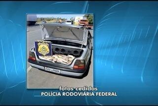 PRF apreende cerca de 100 quilos de peixes imprórpios para consumo na BR-135 - Pescado foi encontrado no porta malas de um veículo e bancos traseiro.