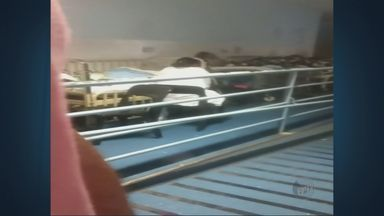 Sem espaço no PS Infantil do Hospital Mário Gatti, crianças são atendidas no corredor - Hospital de Campinas está com superlotação no setor de pronto-socorro infantil na tarde deste sábado (28).