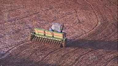 Frio volta com intensidade no Sul e no Sudeste - Mesmo com o frio, a rotina do homem do campo não muda. Muitos agricultores acordam no frio da madrugada para começar o trabalho no campo.