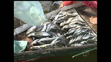 Pescadores cadastrados na Colônia Z-20 tem prejuízos pelo atendimento paralisado no MTE - Eles não conseguem receber o seguro defeso.