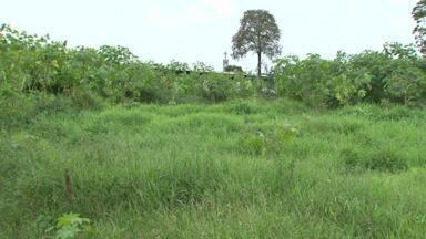 Moradora reclama de sujeira em terreno, mas o local é registrado como depósito de bebidas - Prefeitura diz que não tem como multar o dono do local.