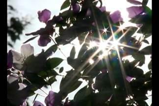 Em Cruz Alta, RS, a temperatura chegou aos 25 graus em pleno inverno - Calor fora de época deve continuar até amanhã.