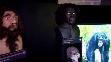 Museu Catavento cultural recebe exposição que conta história da evolução humana - Museu também marca a abertura das arcadas subterrâneas que eram fechadas ao público.