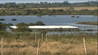 Chuva provoca cheia no rio Uruguai, no RS - O excesso de chuva no sul do país provocou uma grande cheia no rio Uruguai. No oeste do rio grande do sul, os agricultores já calculam os prejuízos. Em em Uruguaiana, a prefeitura estima que as perdas passem de 15 milhões de reais.