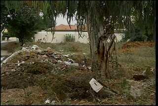 Em vários bairros de Petrolina, moradores se queixam de terrenos abandonados - Terrenos causam transtornos e geram insegurança.