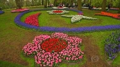 Parque holandês com 7 milhões de flores movimenta 5 bilhões de euros - Keukenhof, em Lisse, é uma vitrine para produtores de flores. Diretor do parque conta que as flores são plantadas à mão. Preparação dura dez meses.