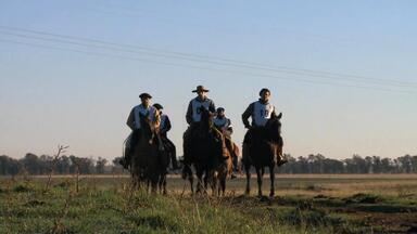 Uruguaiana, RS, recebe a Marcha de Integração de Cavalos Crioulos - Assista ao vídeo.