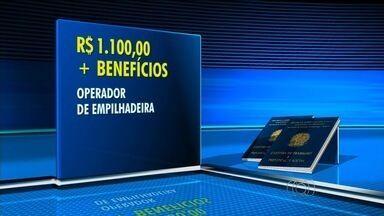 Confira as vagas de emprego em Goiânia - Dentre as oportunidade, há vaga para operador de empilhadeira.