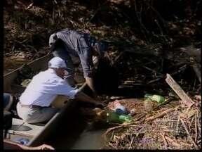 Mariápolis recebe ação ecológica em rio - Voluntários recolheram lixo das águas.