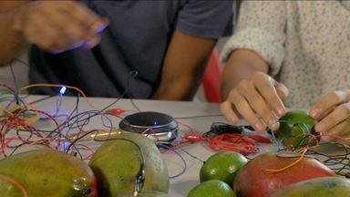 'Hoje é Dia de' Feira: música feita com frutas - Grupo faz música combinando frutas e elementos tecnológicos
