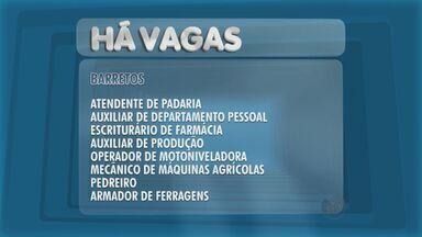 Confira as vagas de emprego em Barretos, SP - São funções disponíveis para ambos os sexos e ainda tem vagas para estágios.