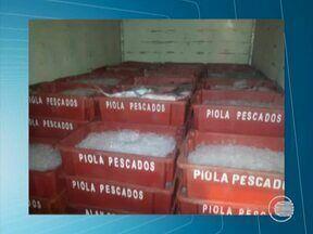 PRF apreende 2,4 toneladas de peixe transportadas sem autorização no Piauí - Mercadoria não tinha nota fiscal e autorização da vigilância sanitária.Produto abasteceria mercados de Piripiri até Parnaíba, Norte do estado.