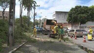 Galhos e árvores espalhados no chão causam transtorno no bairro da Encruzilhada - Emlurb explicou que o serviço de poda em 13 árvores foi feito à noite para não atrapalhar a movimentação de pessoas no mercado da Encruzilhada.
