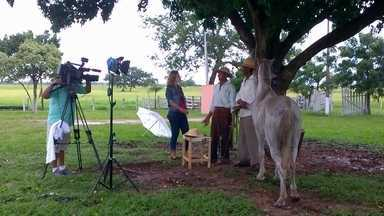 Réporter da série Sotaques do Brasil conta sobre os bastidores da viagem pelo país - A equipe do Jornal Hoje viajou 16 mil quilômetros para mostrar as diferentes formas do brasileiro falar. Ao todo foram feitas 800 entrevistas.