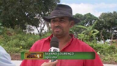 Projeto ajuda agricultores a enfrentar estiagem no semi-árido alagoano - Um projeto está ajudando os agricultores a enfrentar a estiagem. No município de Minador do Negrão, a meta é construir 150 cisternas.