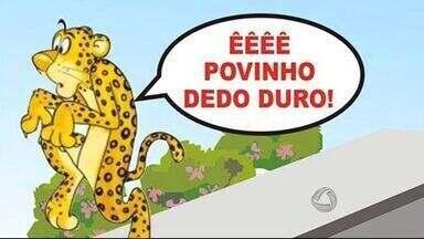 População encara com descontração aparição de onças na área urbana de Corumbá - Nos últimos dias, o MSTV falou bastante sobre o aparecimento de onças em Corumbá. Apesar da preocupação em alguns casos, essa situação virou o assunto da cidade, com uma boa dose de descontração.