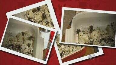 """Fernando Kassab ensina receita de salada de couve-flor com azeitonas - Aprenda a fazer a receita do """"Prato Fácil"""" que leva um toque de gergelim."""