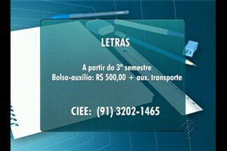 Confira as vagas de emprego e estágio para Belém no Bom Dia Pará - Há oportunidades para estudantes e profissionais.