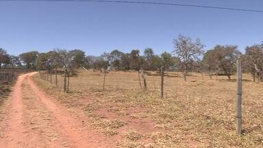 Produtores do DF estão preocupados com a seca - Com o aumento da seca algumas propriedades foram incendiadas. No final de semana, moradores combateram o fogo de uma fazenda.