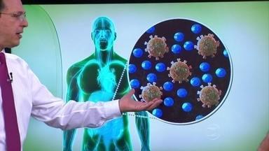 Entenda como o remédio retroviral age no organismo - O infectologista Ésper Kallas explica que o medicamento se espalha pelo corpo e se concentra em alguns tecidos, como o linfático. O remédio retroviral bloqueia a capacidade do vírus se multiplicar na mesma velocidade.