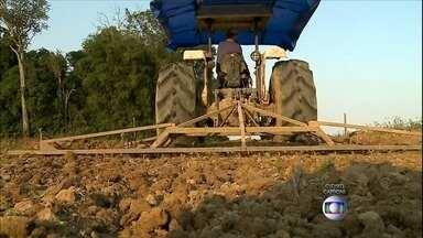 Plantio do arroz é antecipado em SC - Os agricultores anteciparam a semeadura na tentativa de escapar do calor intenso do verão.