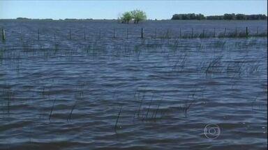 Fortes chuvas inundam grande áreas de produção de trigo na Argentina - Pelo menos 30% da área de trigo está alagada. A província de Buenos Aires, região de maior produção agrícola do país, foi a mais afetada. As chuvas também deixaram estradas debaixo de água.