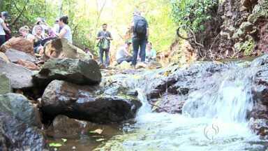 Estudantes monitoram qualidade de córrego de Maringá - Este é um dos pequenos mananciais que desaguam no rio Ivaí.