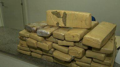 Polícia Federal apreendeu 34 quilos de drogas em Campina Grande - A droga veio do estado de Goiás e estava com uma jovem de 19 anos.