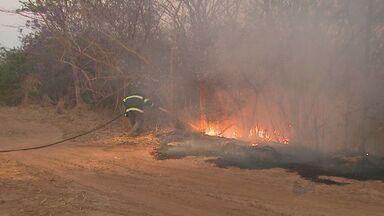 Incêndio destrói parte de área de proteção em Brodowski, SP - Bombeiros e caminhão-pipa trabalharam para apagar o fogo e evitar que casas próximas fossem atingidas.