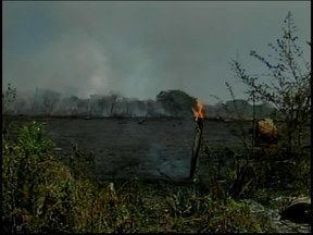 Bombeiros controlam incêndio na Mata do Noé em Divinópolis - Chamas duraram mais de sete horas. Segundo os militares, 50 hectares foram queimados.
