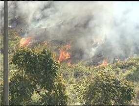 Equipe de reportagem registra um incêndio na mata próxima do Morro da Usipa em Ipatinga - Equipe solicitou o atendimento dos Bombeiros.