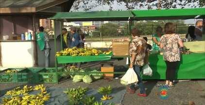 Feira oferece produtos sem agrotóxicos em Campina Grande - A feira orgânica acontece toda quarta-feira. Veja como economizar nas compras.