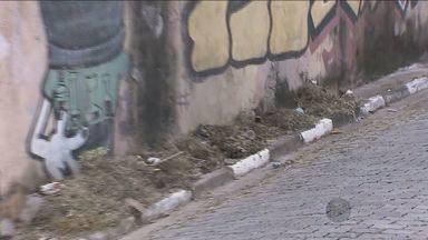 Morador de Guarulhos, SP, registra reclamação sobre presença de lixo na porta de casa - De acordo com o morador, o lixo descartado na porta de casa é realizado justamente por aqueles que deveriam zelar pela limpeza do mesmo.