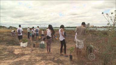 Voluntários se reúnem em Petrolina para limpar as margens do Rio São Francisco - O Dia das Crianças foi marcado também pela brincadeira de plantar mudas de árvores nativas.