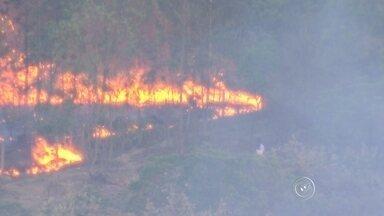 Zona Rural de Itu sofre com incêndios florestais - A falta d'água é só um dos problemas dos moradores de Itu. Na zona rural, eles também enfrentam os incêndios florestais. O fogo está destruindo uma área de mata nativa. Só ontem, sete focos de queimadas foram registrados na região.