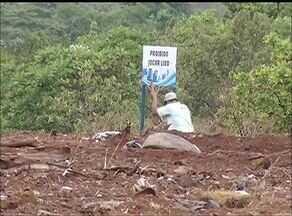 Lixo é removido de terreno no sul de Palmas após denúncia do Jornal Anhanguera - Lixo é removido de terreno no sul de Palmas após denúncia do Jornal Anhanguera