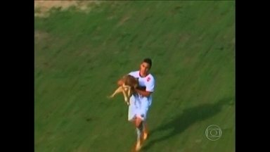 Você viu? Cachorro invade gramado, morde atacante do São Paulo de Rio Grande e vira herói - Cidade de Rio Grande está mobilizada para encontrar o cão Suárez, que trouxe sorte após morder o atacante.