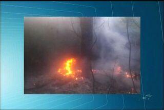 Calor intenso no Cariri ocasiona focos de incêndio na região - Foram registrados três focos no município do Crato.