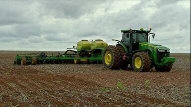 Terra seca prejudica plantio da safra de grãos e deixa os agricultores preocupados - Em regiões que são grandes produtoras de grãos, o plantio em muitas propriedades ainda nem começou; em outras começou com atraso.