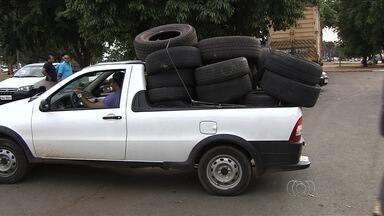 Centro de Zoonose faz operação para recolher pneus abandonados em Goiânia - Cerca de 40 caminhões e 120 agentes participam do mutirão. Já foram recolhidos mais de 4 mil pneus.